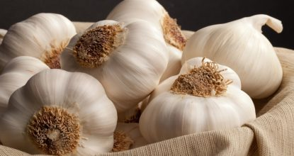 Garlic from high blood pressure: good or harm?