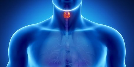 Features of the diet for the treatment of the thyroid gland